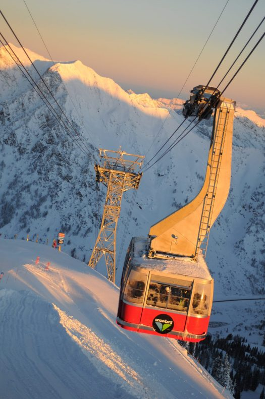 Snowbird, Utah, part of the Mountain Collective. The Mountain Collective goes on Sale for the 2019-2020 Season. Valle Nevado, Chile added as first South American partner.