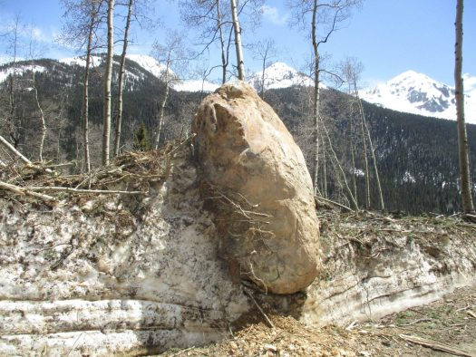 A 9 by 6 foot boulder came down an avalanche path this winter resing along the Boulder Gulch Trail. Photo by Mark Esper. Silverton Standard Miner. Durango Herald. Due to a year of lots of avalanches, summer operations might be delayed as digging out will take time.