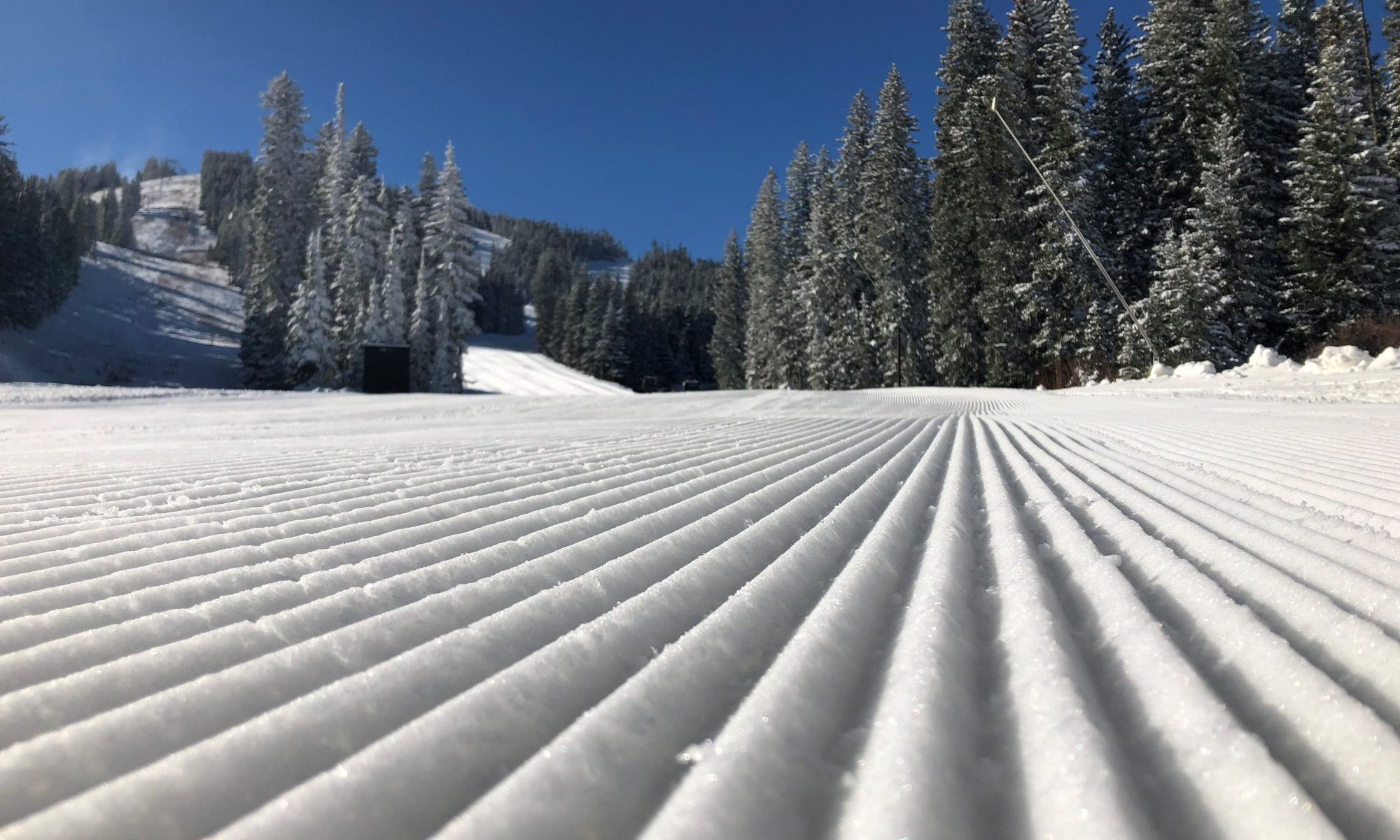 Eldora-Sam Bass. Colorado Ski Country USA. Colorado Ski Country USA Announces Double Digit Increase in Skier Visits in 2018-19 Season.