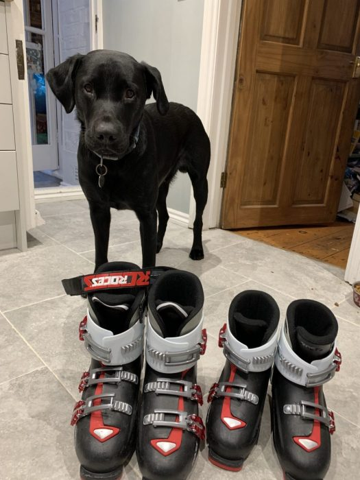 The Roces ski boots of my kids just needed a bit of setting adjustment and now we are ready for a new ski season. Ozzy was overlooking the grand tasks! 7 things that can help you when taking kids skiing.