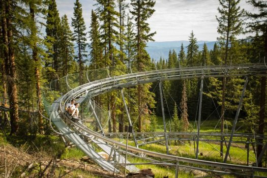 The Lost Forest mountain coaster. Aspen Snowmass is opening for the Summer Season.