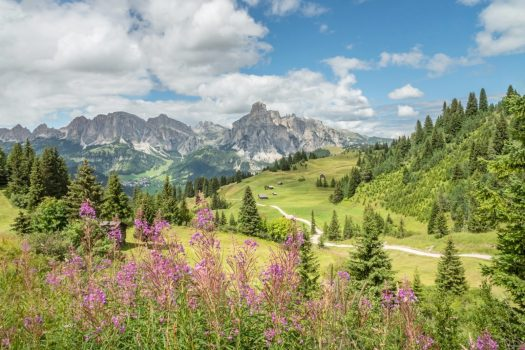 The Sassongher. Photo by Paola Finali. Alta Badia Tourism Board. Planning your summer in the mountains of Alta Badia.