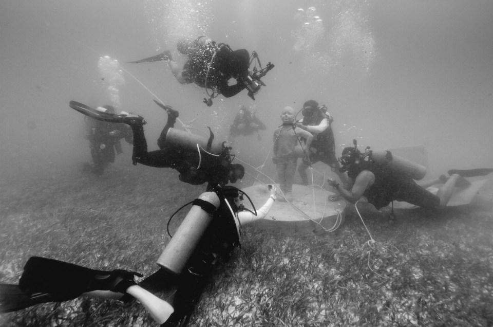 """Hundimiento de """"Diego"""" con MUSA y siembra de coral con la CONANP"""