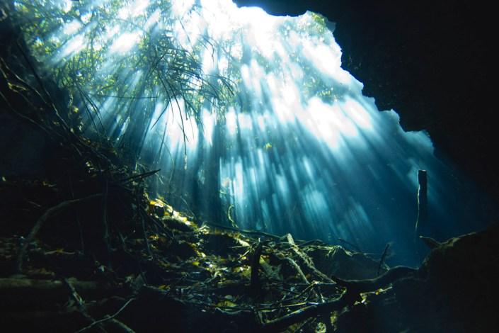 Light entrance at Cenote Tajmaha, north of Tulum. Shot with Sony Alpha + Ikelite housing