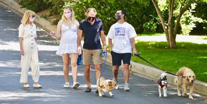 The married couple went for a walk with their dogs and the parents of Sophie, Sally and Andrew