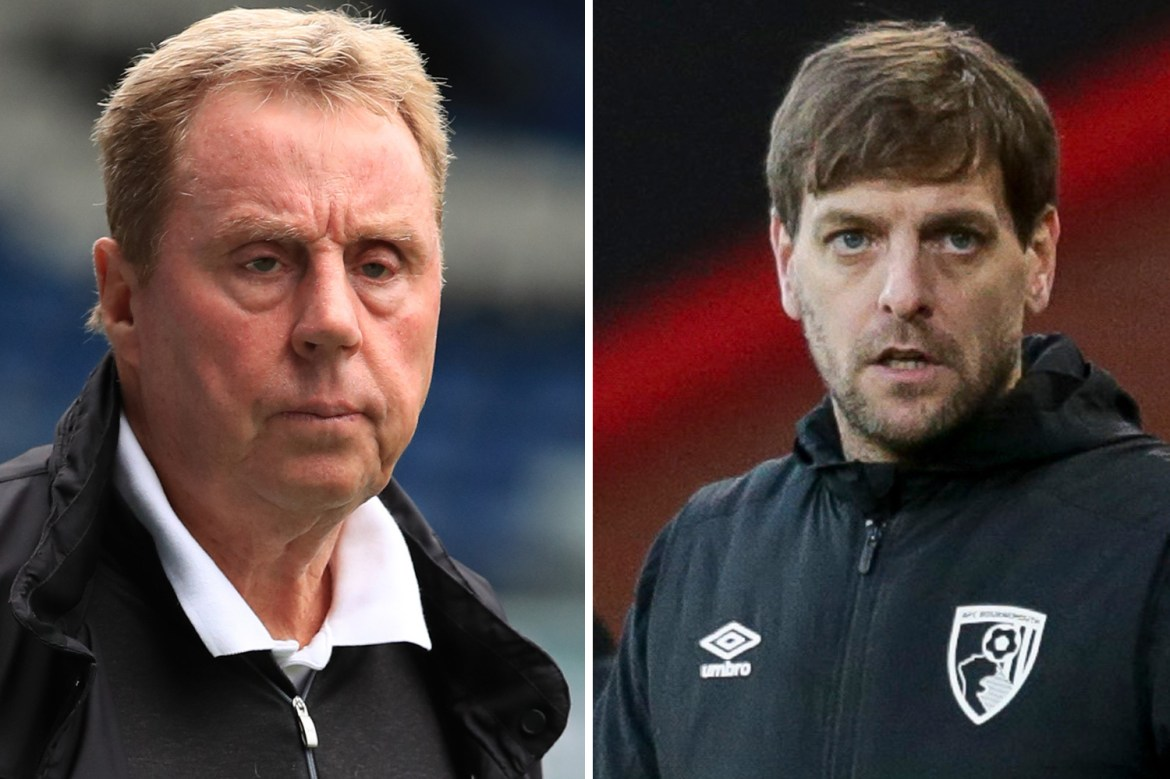 Image result for Harry Redknapp returns to Bournemouth