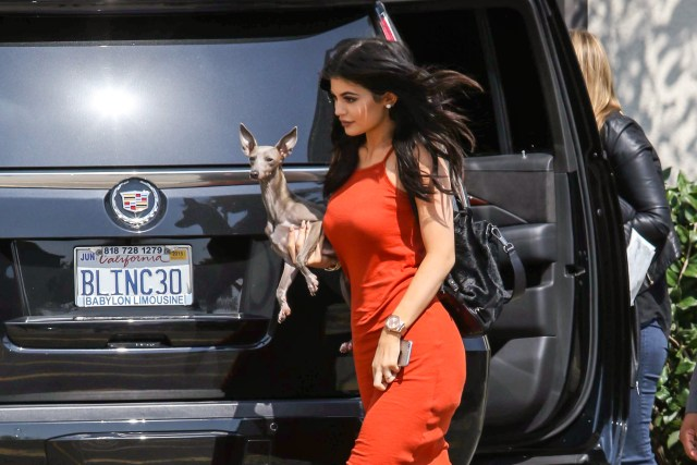 Kylie Jenner with her dog