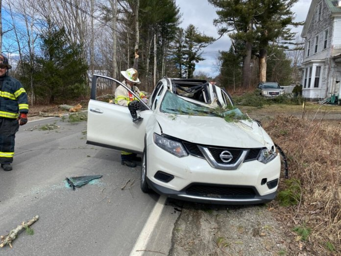 Hager died instantly as a tree branch struck her vehicle