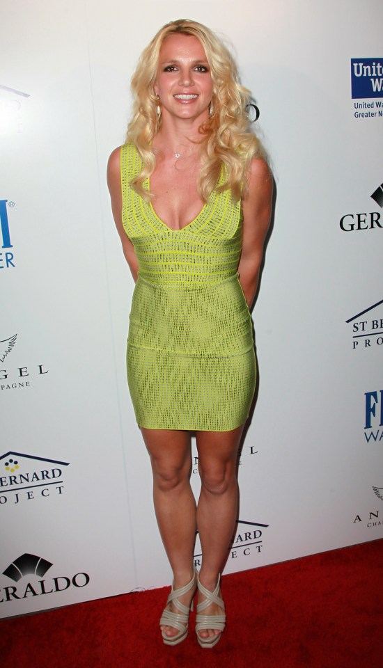 McGowan said Britney can make 'absolutely no' basic life decisions for herself