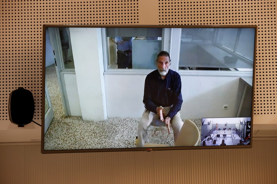 McAfee testifying via video during an extradition hearing at the National Court in Madrid, Spain, on June 15