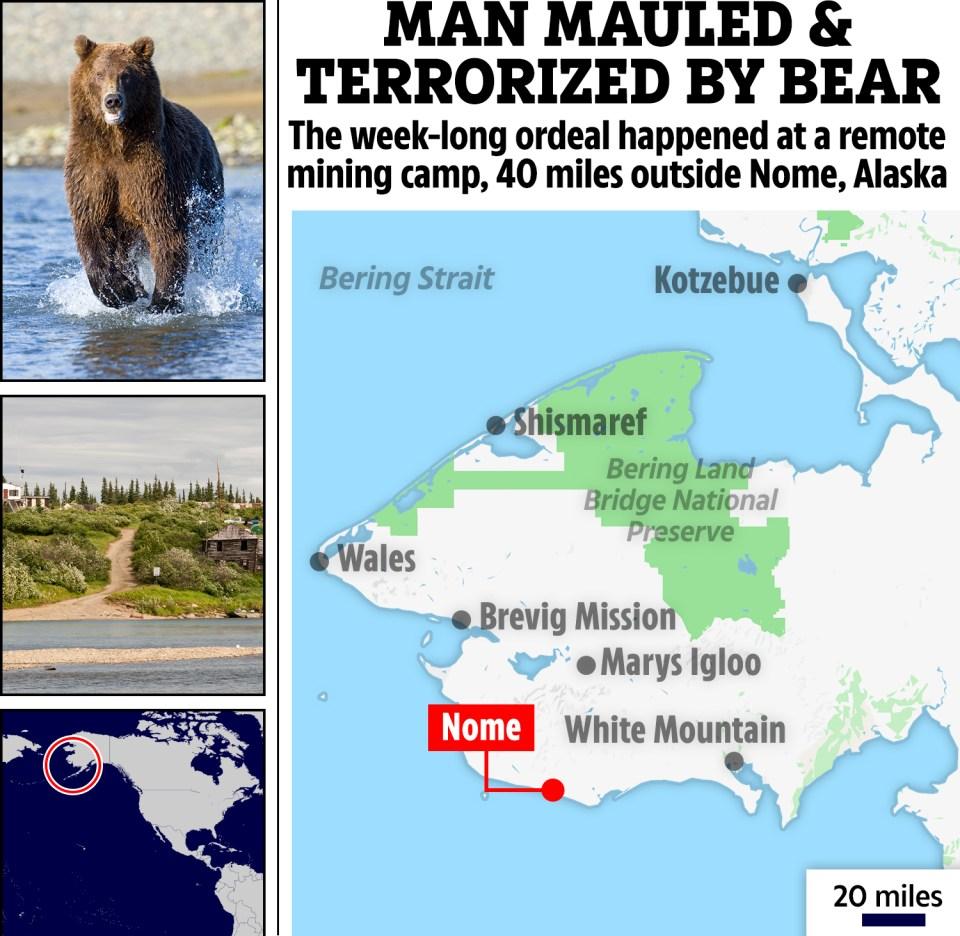 The bear pounced on him near his cabin near the Big Four Creek near the Casadepaga River in Solomon, Alaska