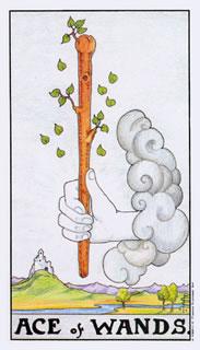 betekenis tarotkaart staven aas