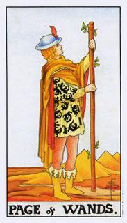 betekenis tarotkaart staven schildknaap bij het kaartleggen met de tarot