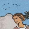 de betekenis van de vogels in de tarotkaart zwaarden schildknaap