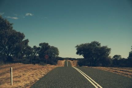 unendlich schöne bergauf und bergab Fahrten...