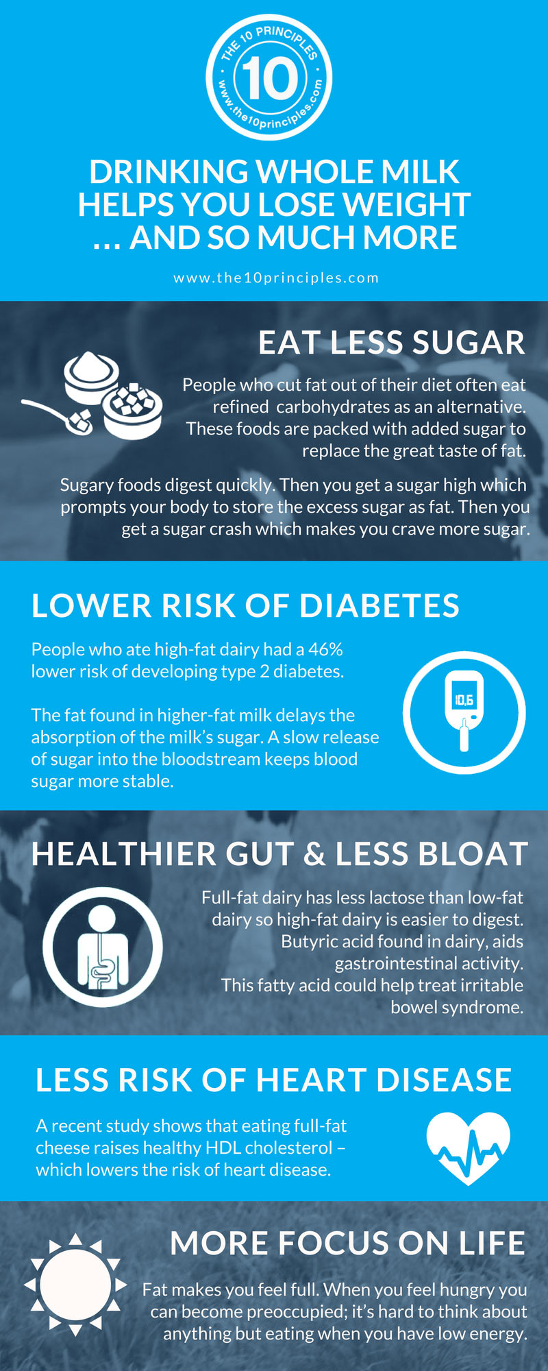 whole milk helps you lose weight - infographic