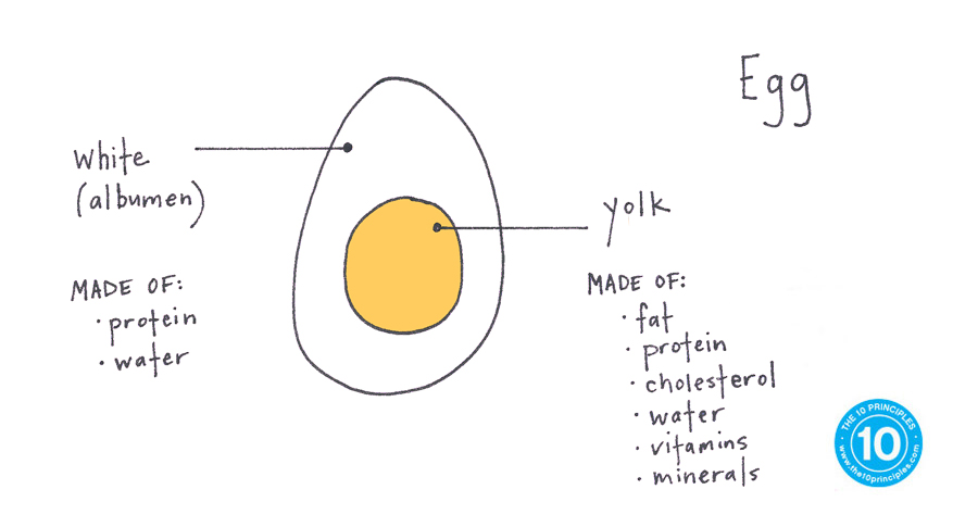 new years resolution - anatomy of an egg!