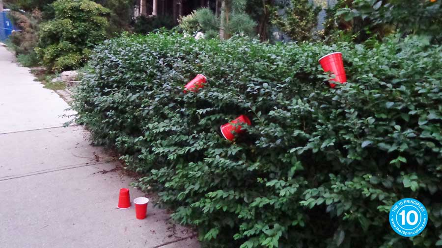 addicted to dieting - red cups