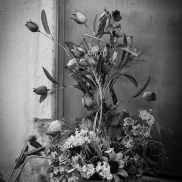 flower arrangement street photography