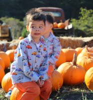 Tucker in the Pumpkin Patch 3