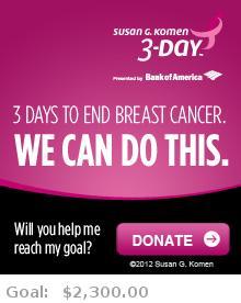 Help me reach my goal for the Susan G. Komen San Diego 3-Day