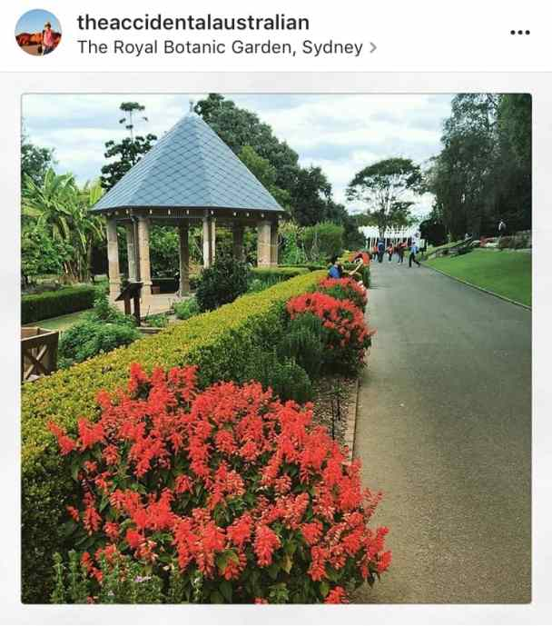 Royal Botanic Garden spring walk