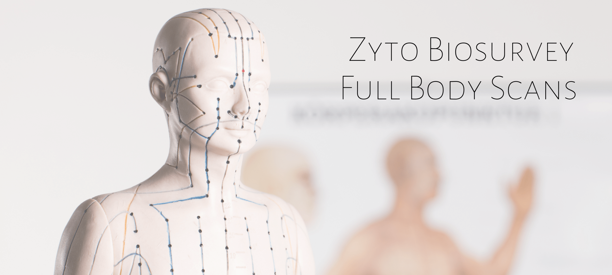 The Accrescent™ - ZYTO Biocommunication Scan