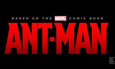 Marvel's ant-man. The action pixel. @theactionpixel