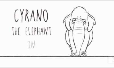 cyrano. the elephant. aaron blaise. the action pixel. @theactionpixel