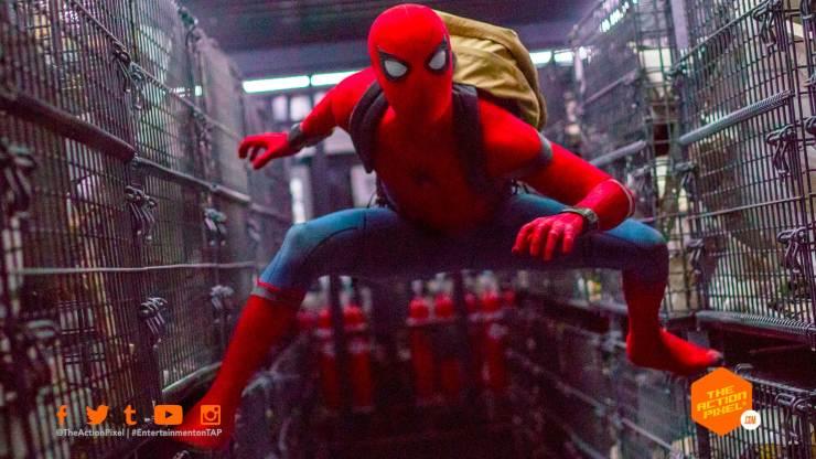 spider-man, Ruben Fleischer, marvel , mcu, spider-man, venom movie, mcu, marvel , featured, tom holland , tom hardy, peter parker, eddie brock, sony pictures, marvel studios, featured,