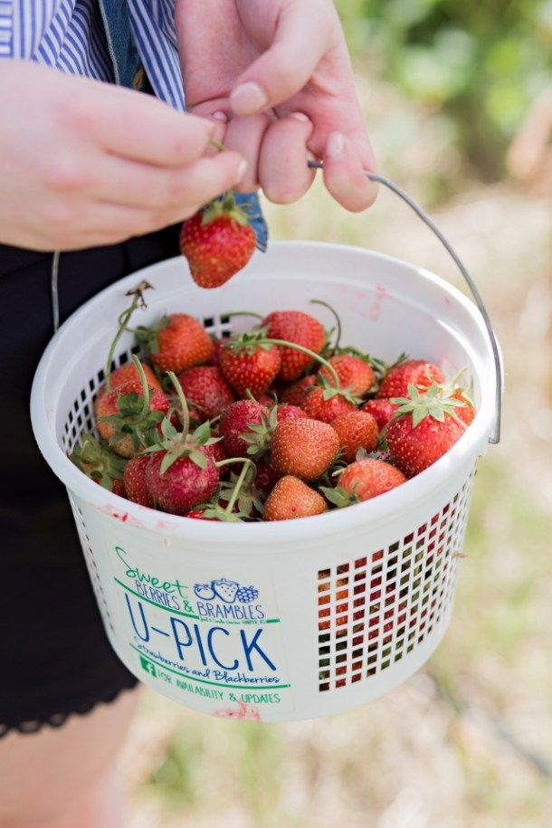 Strawberry picking outfit for making strawberry jam | theadoredlife.com