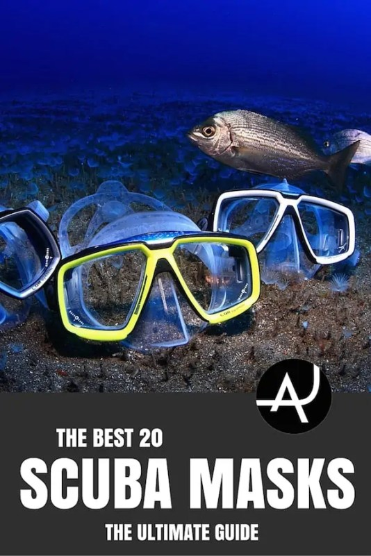 best dive mask reviews