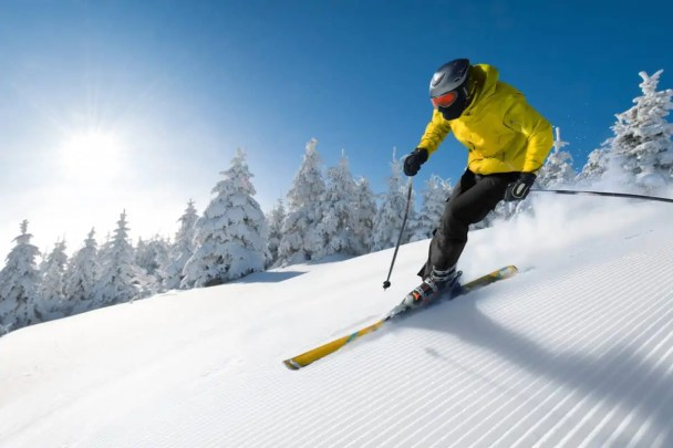 ideal downhill skis
