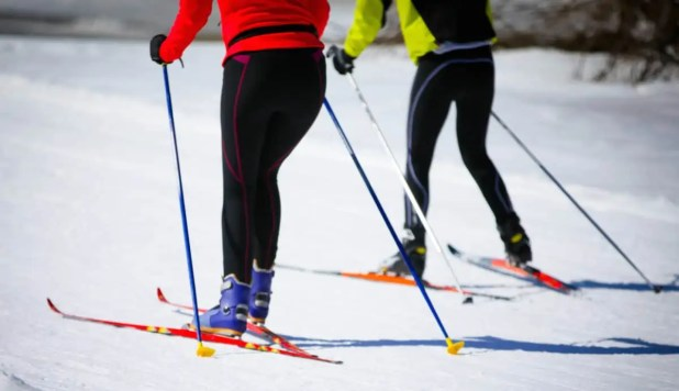 what poles to use for skiing
