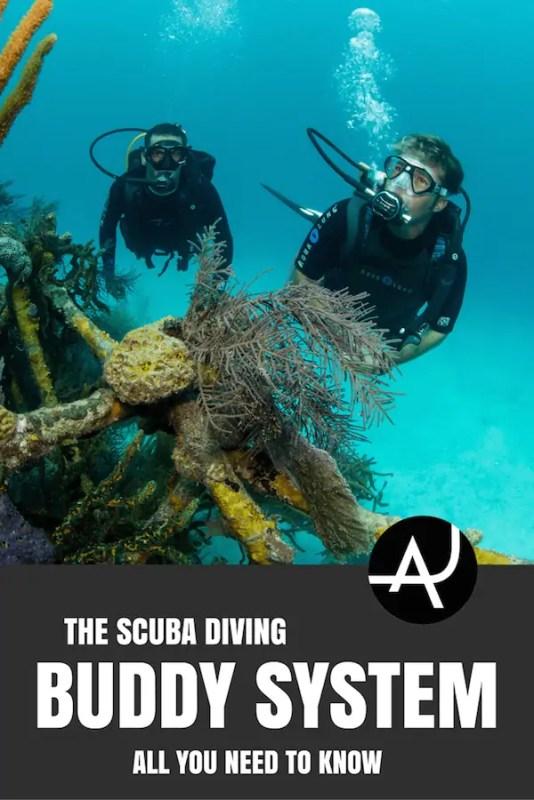 scuba diving buddy rules