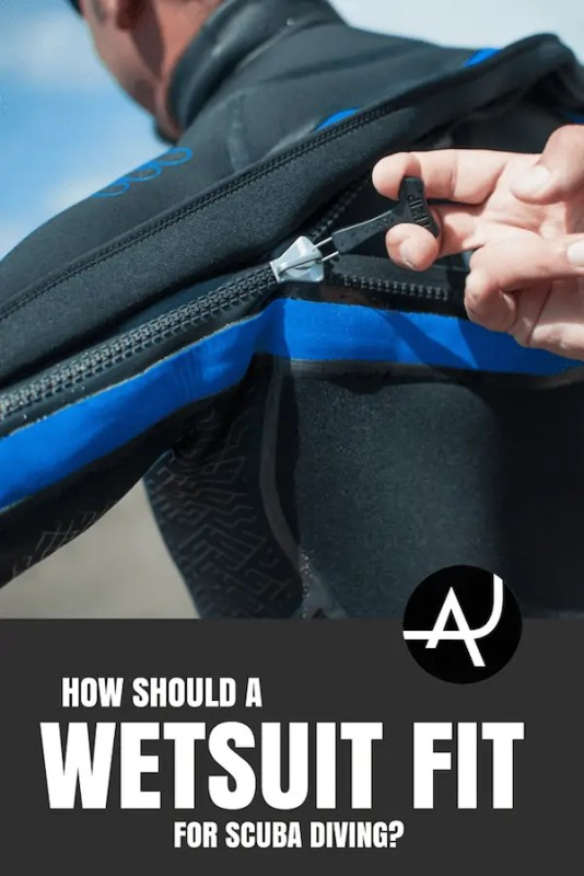 how to know if a wetsuit fits