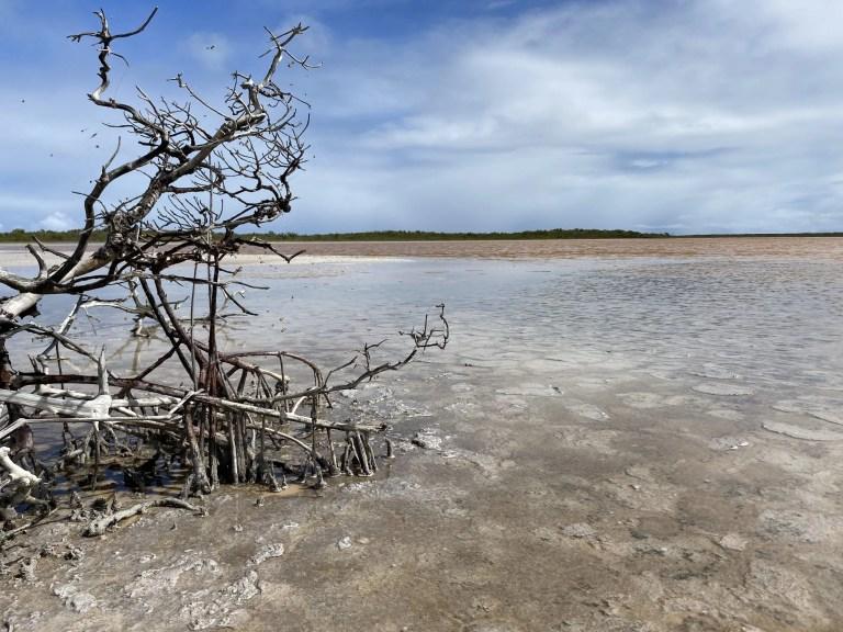 Salt Ponds The Adventure Travelers