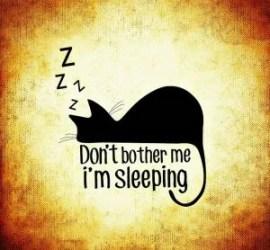 eating while sleeping