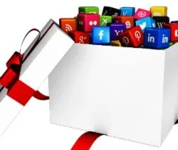 Job Description Social Media Manager Blossom Blog