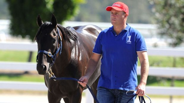 Under scrutiny: Trainer Danny O'Brien is caught up in the cobalt scandal.