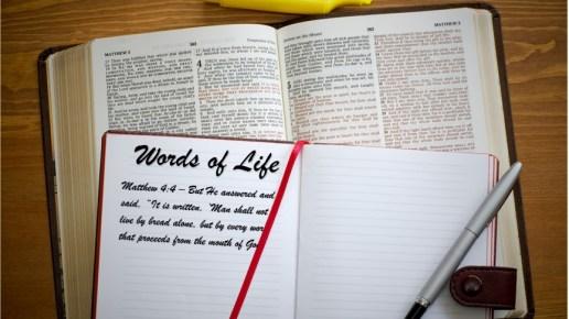 December 2018 Words of Life (Week 2)