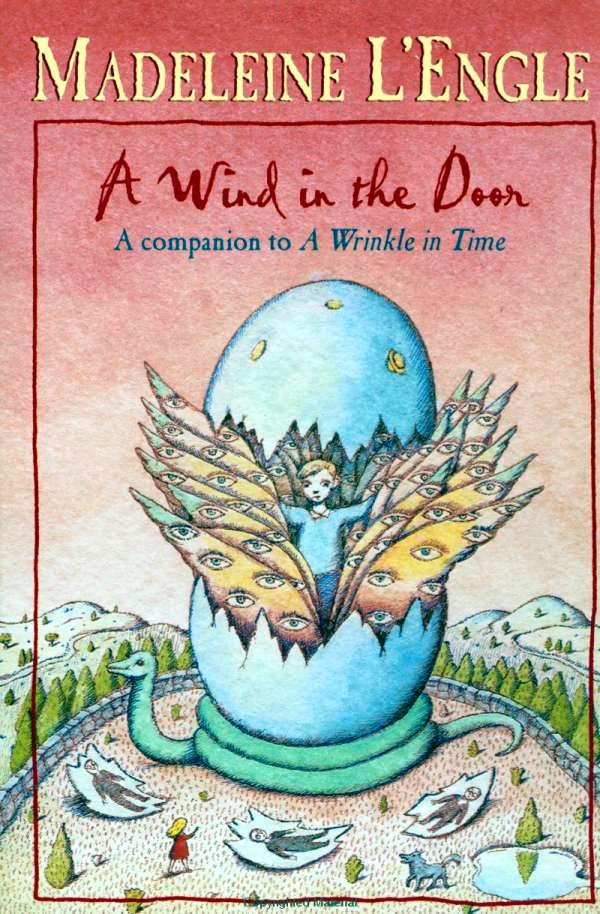 Image result for a wind in the door book cover