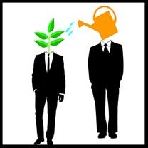mentoring career guidance