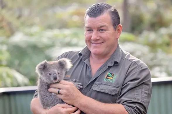 koala health check Australian Reptile Park