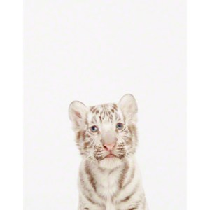 baby-animal-prints-faces-crown-nursery-decor