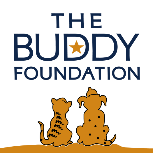 buddy-foundation