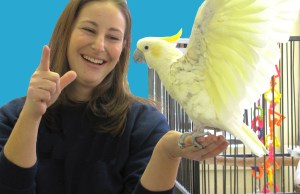 Animal Jokes becky-and-bird-copy