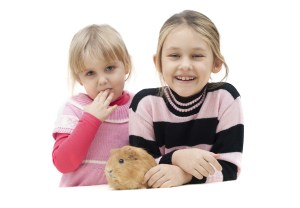 Girls with guinea pig