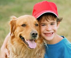 Animal Store Animal Jokes Baseball Dog Joke