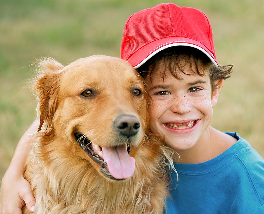 Animal Store Baseball Dog Joke